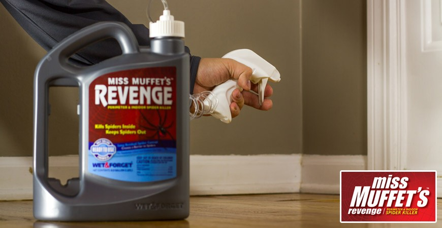 Kill spiders in your garage with Miss Muffett's Revenge